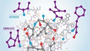 Figure 1. High Nitrogen Feedstock-molecular structure