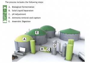 Typical DUCTOR facility layout