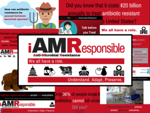 Program branding and social media graphics for the iAMR Project.