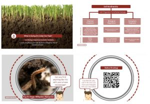 Figure 4. Sample pages from the Soil Biology Inspection Guide.