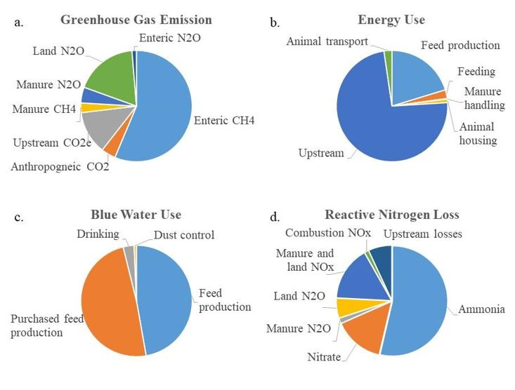 Distribution of the major sources for each environmental footprint.