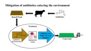 Figure 1.  Illustration of a wastewater treatment process to reduce the antimicrobials load applied through irrigation of agricultural wastewater.  Loading soils with antimicrobials may cause increased antimicrobial resistance. This resistance may make antimicrobials less effective to treat humans.