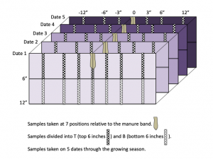 Figure 2. Current research explored nitrogen distribution through 5 dates in the growing season to develop both a spatial and temporal appreciation of nitrate distribution and efficiencies.